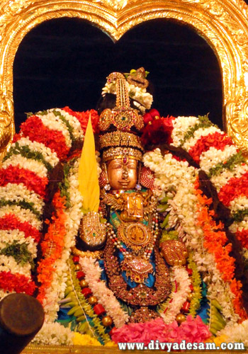 Sri Perundevi Thayar - Kanchipuram Temple